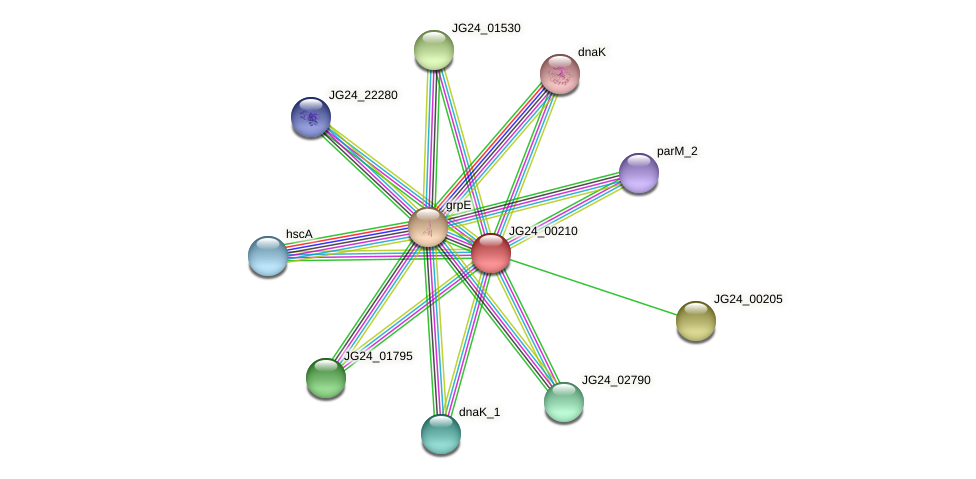 JG24_00210 protein (Klebsiella pneumoniae) - STRING interaction network