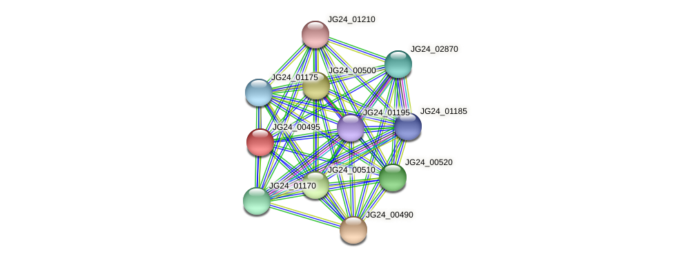 JG24_00495 protein (Klebsiella pneumoniae) - STRING interaction network