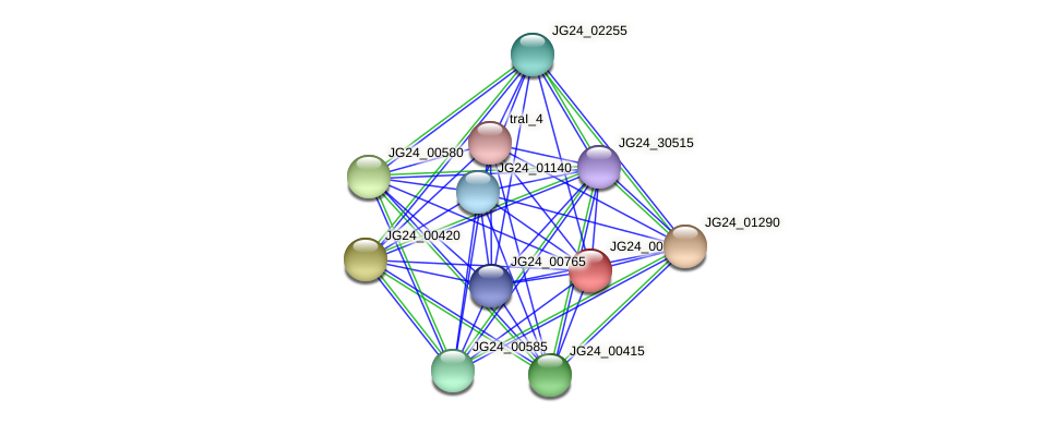 JG24_00820 protein (Klebsiella pneumoniae) - STRING interaction network