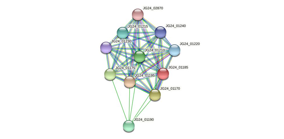 JG24_01185 protein (Klebsiella pneumoniae) - STRING interaction network