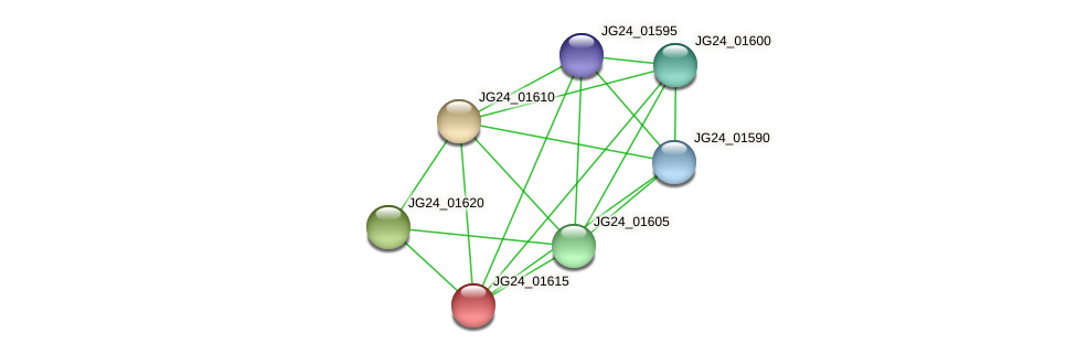 JG24_01615 protein (Klebsiella pneumoniae) - STRING interaction network