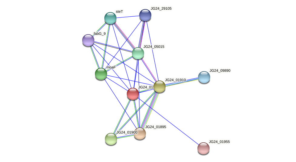 JG24_01905 protein (Klebsiella pneumoniae) - STRING interaction network