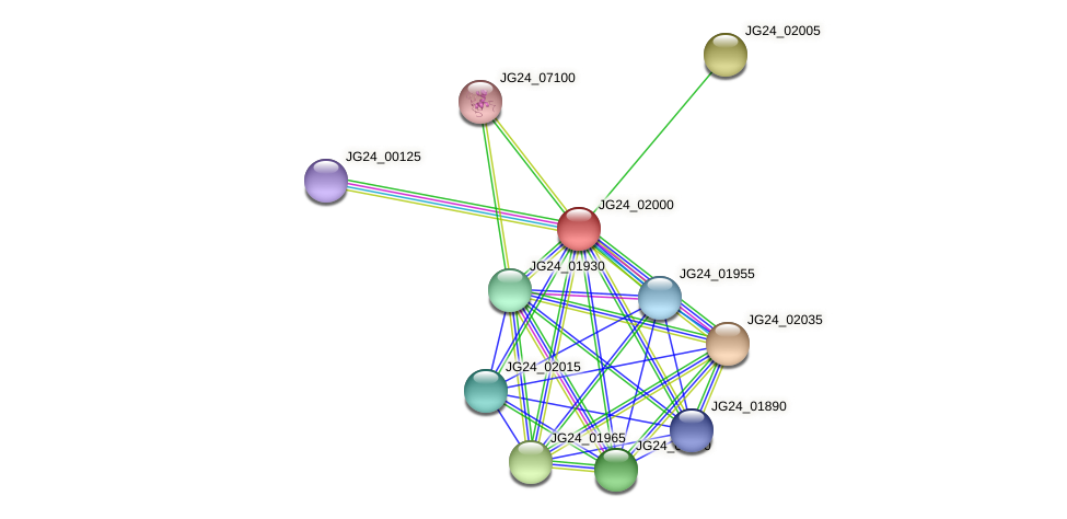JG24_02000 protein (Klebsiella pneumoniae) - STRING interaction network