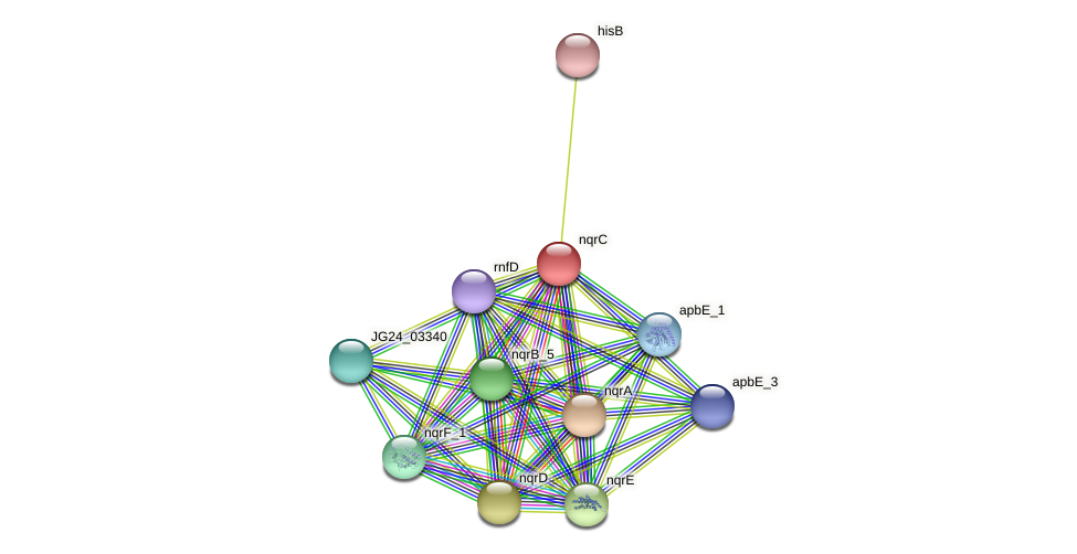 nqrC protein (Klebsiella pneumoniae) - STRING interaction network