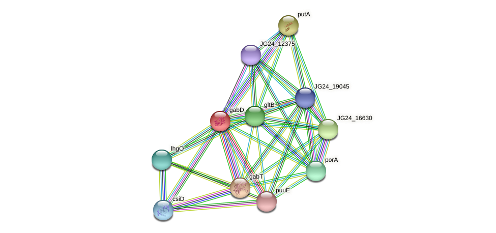 JG24_03455 protein (Klebsiella pneumoniae) - STRING interaction network