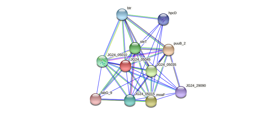 JG24_05045 protein (Klebsiella pneumoniae) - STRING interaction network