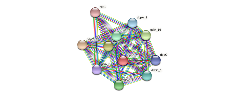 JG24_05285 protein (Klebsiella pneumoniae) - STRING interaction network