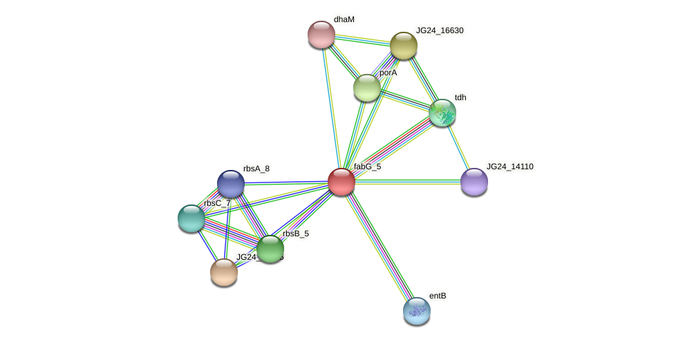 JG24_05370 protein (Klebsiella pneumoniae) - STRING interaction network
