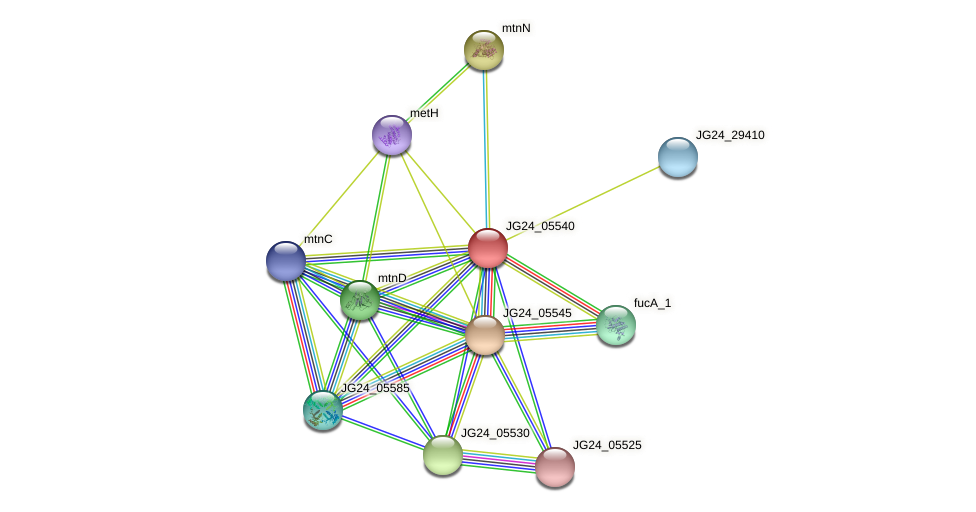JG24_05540 protein (Klebsiella pneumoniae) - STRING interaction network