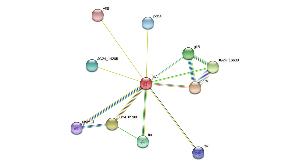 JG24_05975 protein (Klebsiella pneumoniae) - STRING interaction network