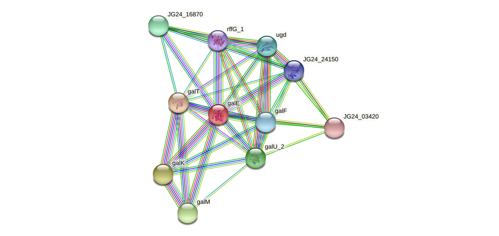 JG24_06265 protein (Klebsiella pneumoniae) - STRING interaction network