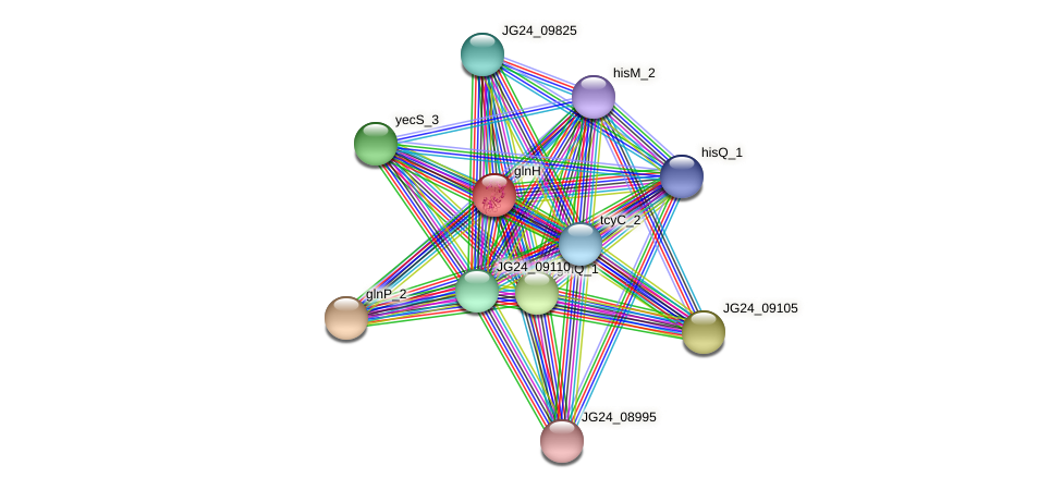 JG24_06655 protein (Klebsiella pneumoniae) - STRING interaction network