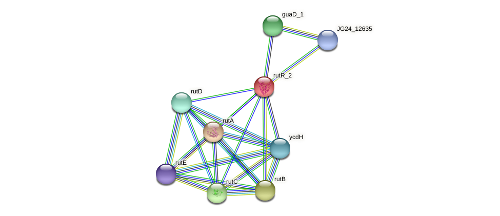 JG24_07910 protein (Klebsiella pneumoniae) - STRING interaction network