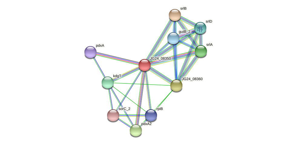 JG24_08350 protein (Klebsiella pneumoniae) - STRING interaction network