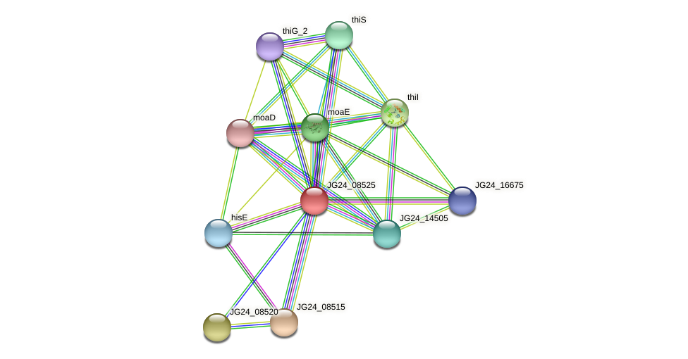 JG24_08525 protein (Klebsiella pneumoniae) - STRING interaction network