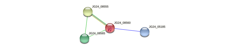 JG24_08560 protein (Klebsiella pneumoniae) - STRING interaction network