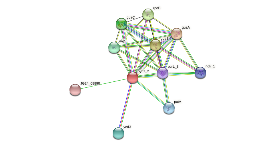 JG24_08900 protein (Klebsiella pneumoniae) - STRING interaction network