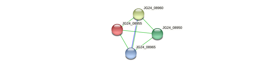 JG24_08955 protein (Klebsiella pneumoniae) - STRING interaction network