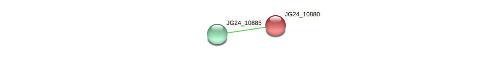 JG24_10880 protein (Klebsiella pneumoniae) - STRING interaction network