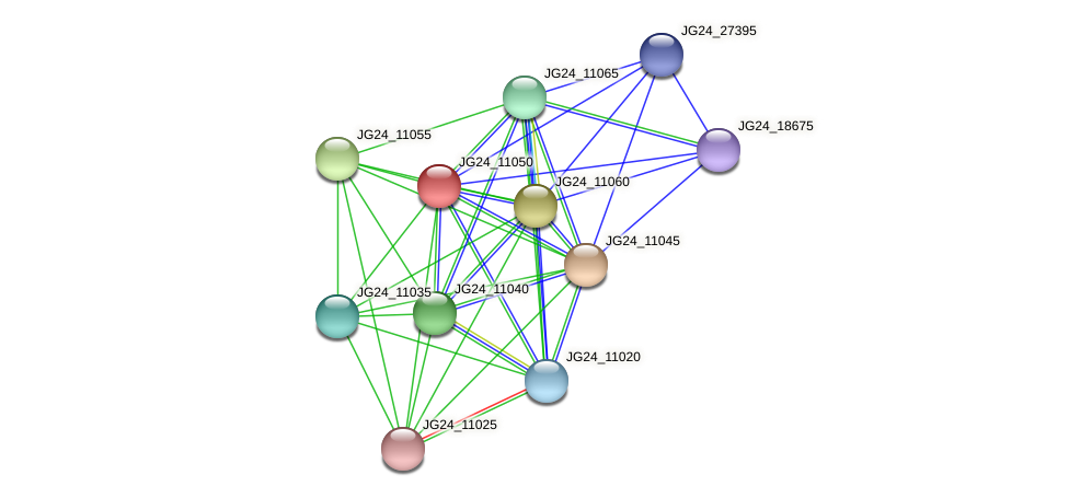 JG24_11050 protein (Klebsiella pneumoniae) - STRING interaction network