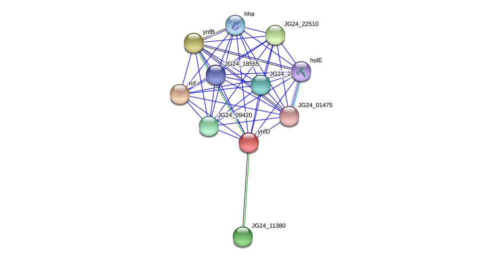 JG24_11375 protein (Klebsiella pneumoniae) - STRING interaction network