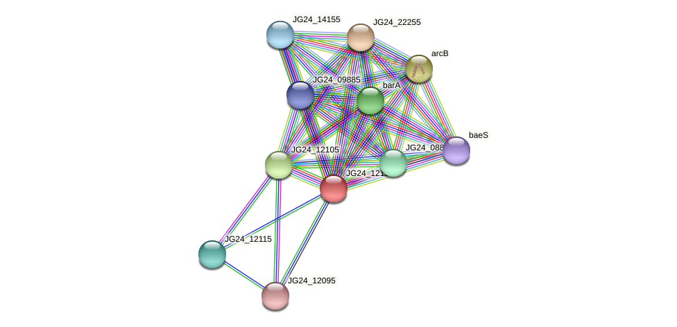 JG24_12110 protein (Klebsiella pneumoniae) - STRING interaction network
