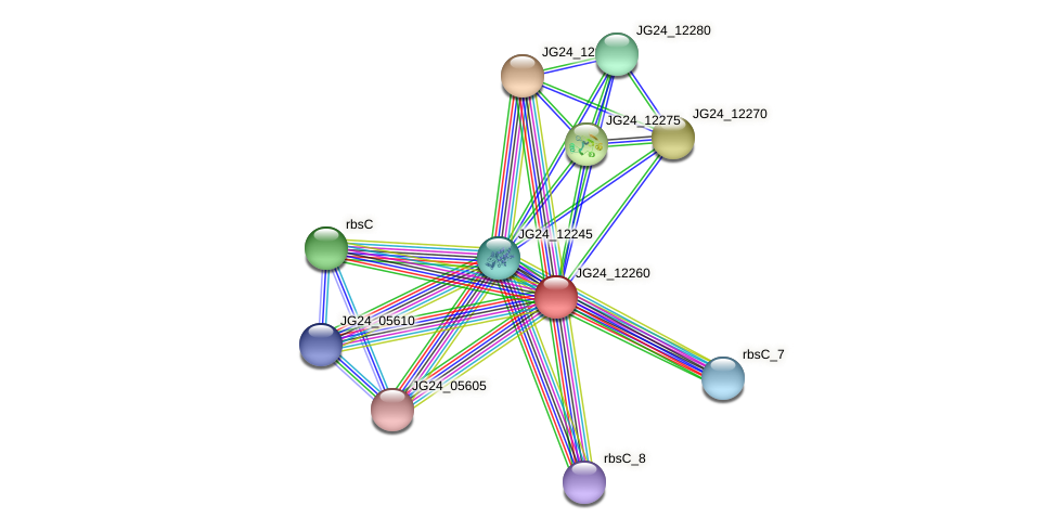 JG24_12260 protein (Klebsiella pneumoniae) - STRING interaction network