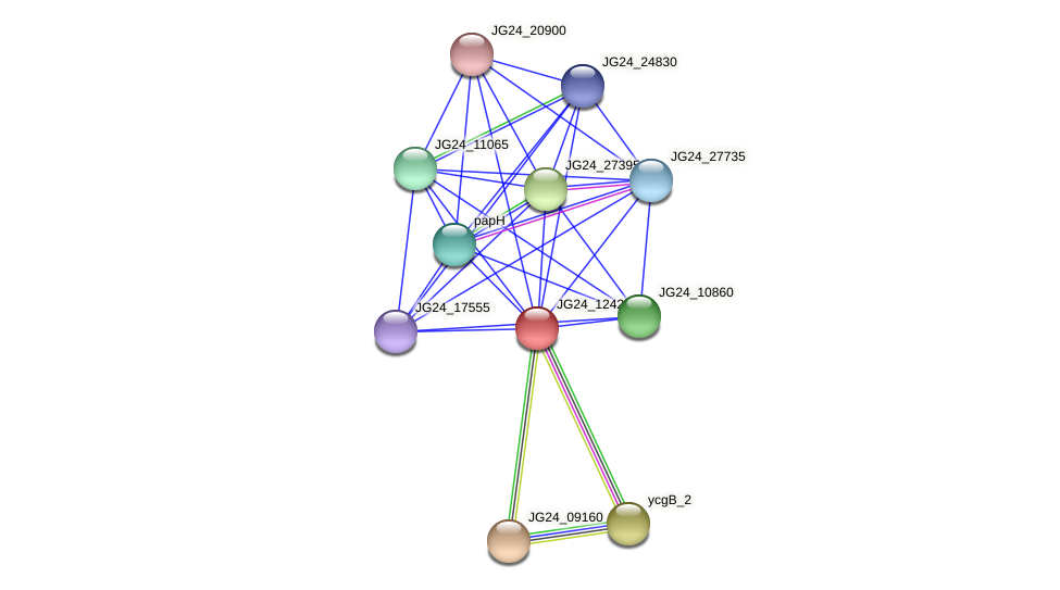 JG24_12425 protein (Klebsiella pneumoniae) - STRING interaction network