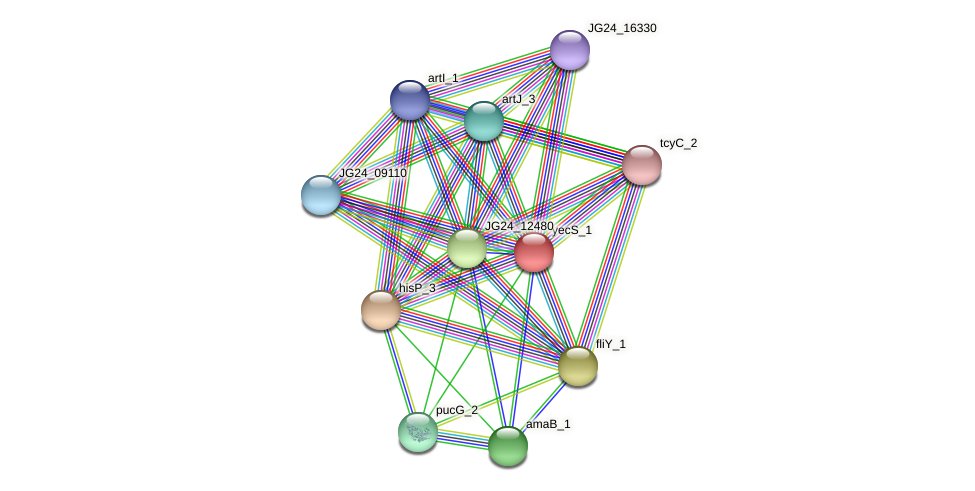 JG24_12485 protein (Klebsiella pneumoniae) - STRING interaction network