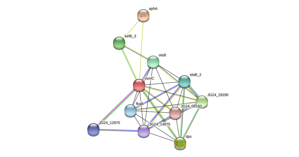JG24_12860 protein (Klebsiella pneumoniae) - STRING interaction network