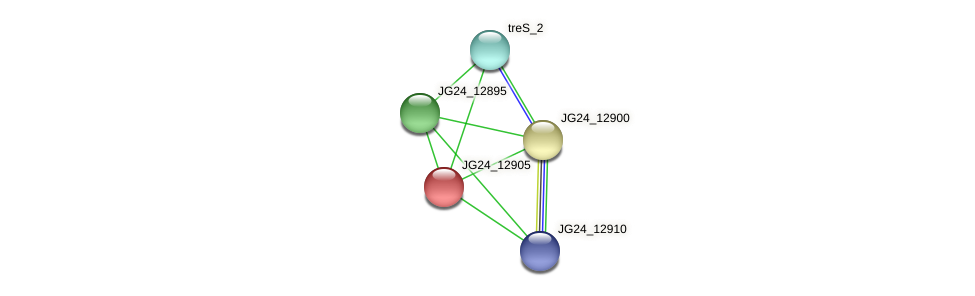 JG24_12905 protein (Klebsiella pneumoniae) - STRING interaction network