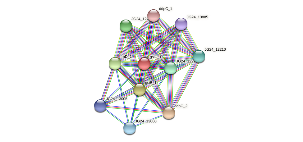 JG24_12985 protein (Klebsiella pneumoniae) - STRING interaction network