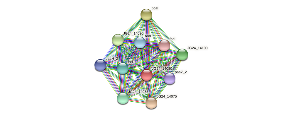 JG24_14080 protein (Klebsiella pneumoniae) - STRING interaction network