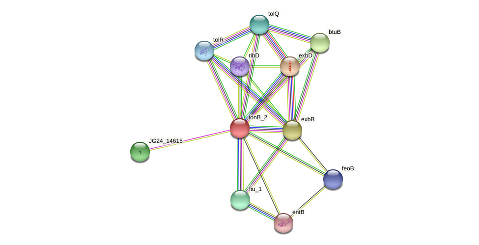 JG24_14885 protein (Klebsiella pneumoniae) - STRING interaction network