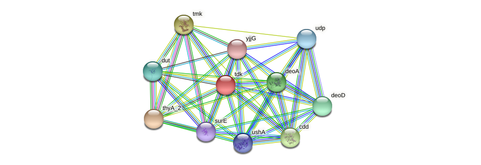 JG24_14965 protein (Klebsiella pneumoniae) - STRING interaction network