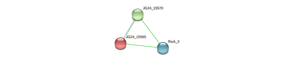 JG24_15565 protein (Klebsiella pneumoniae) - STRING interaction network
