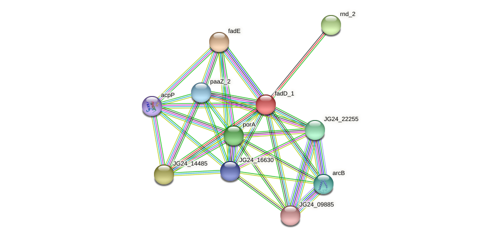 JG24_15670 protein (Klebsiella pneumoniae) - STRING interaction network