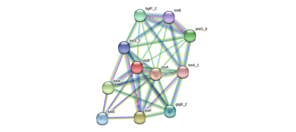 JG24_16070 protein (Klebsiella pneumoniae) - STRING interaction network
