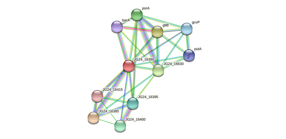 JG24_16390 protein (Klebsiella pneumoniae) - STRING interaction network