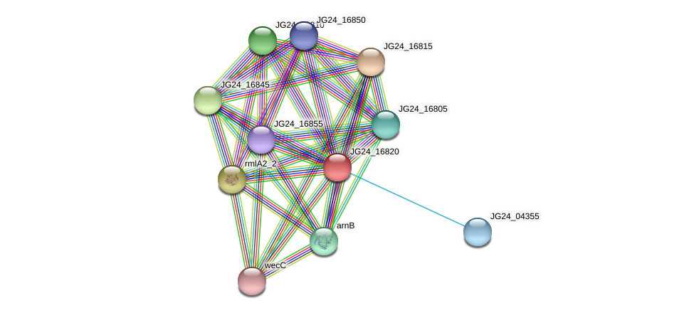 JG24_16820 protein (Klebsiella pneumoniae) - STRING interaction network