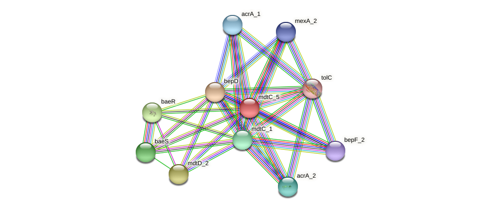 JG24_16985 protein (Klebsiella pneumoniae) - STRING interaction network