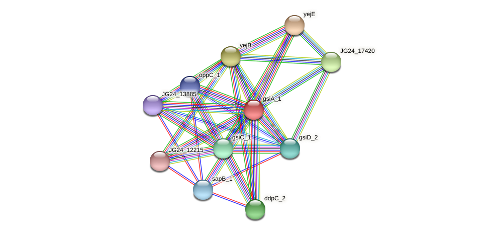 JG24_17435 protein (Klebsiella pneumoniae) - STRING interaction network