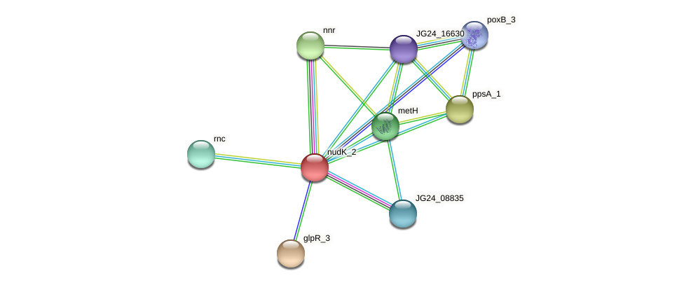 JG24_17475 protein (Klebsiella pneumoniae) - STRING interaction network
