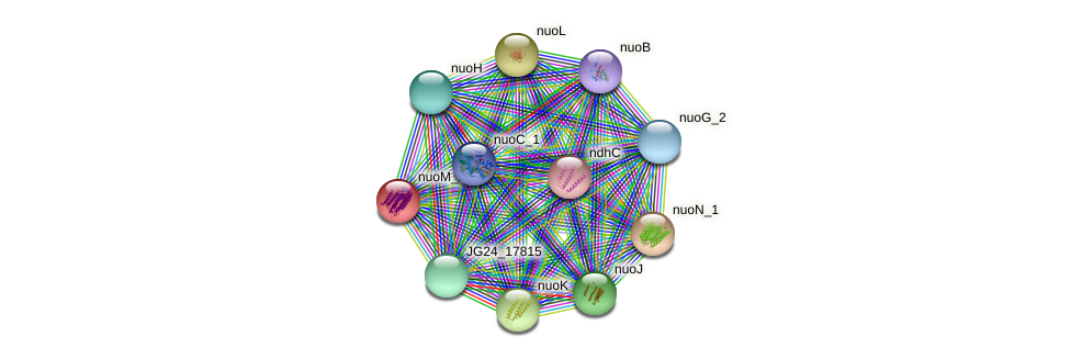 JG24_17795 protein (Klebsiella pneumoniae) - STRING interaction network
