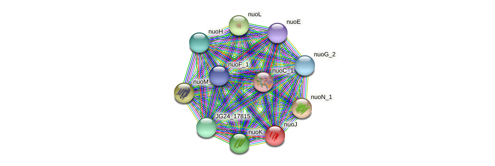 JG24_17810 protein (Klebsiella pneumoniae) - STRING interaction network
