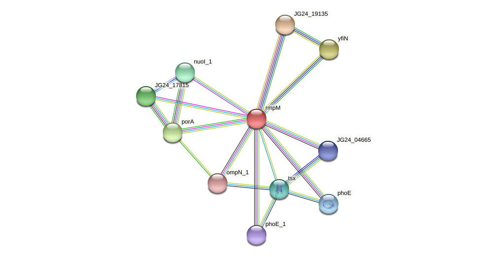 JG24_19145 protein (Klebsiella pneumoniae) - STRING interaction network