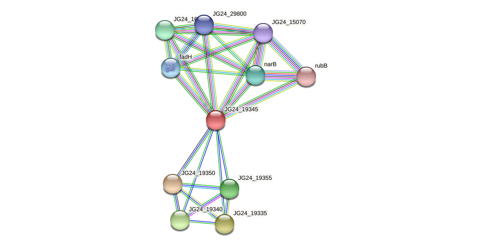 JG24_19345 protein (Klebsiella pneumoniae) - STRING interaction network