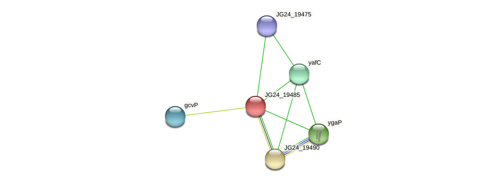 JG24_19485 protein (Klebsiella pneumoniae) - STRING interaction network