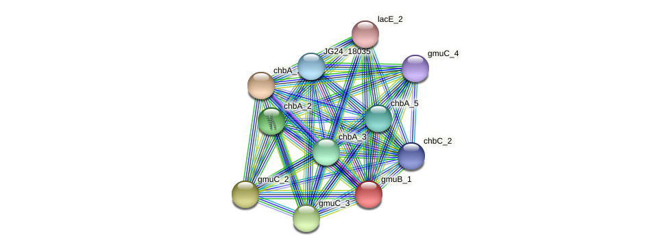 JG24_19915 protein (Klebsiella pneumoniae) - STRING interaction network
