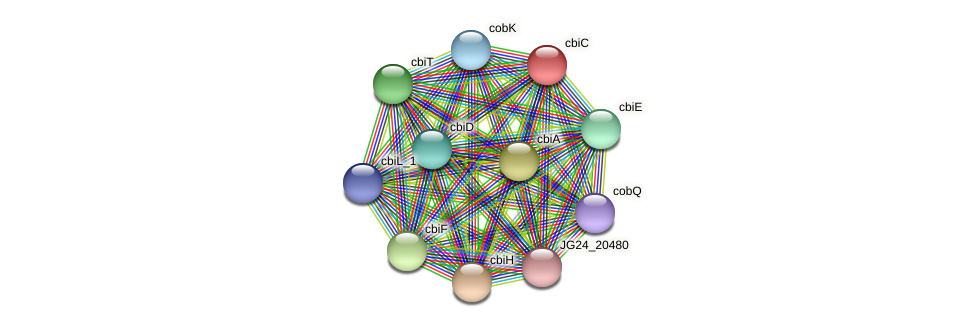 cbiC protein (Klebsiella pneumoniae) - STRING interaction network